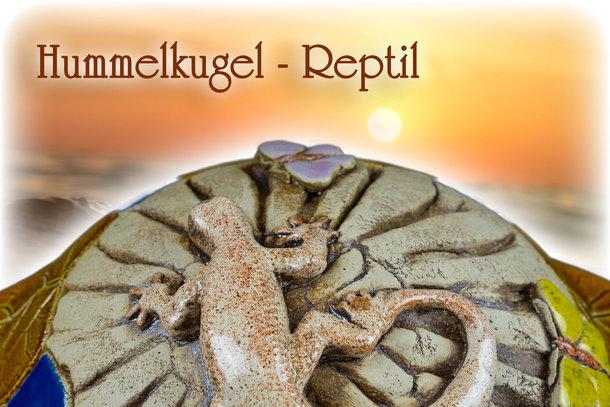 Hummelkugel - Reptil Echse Fosil